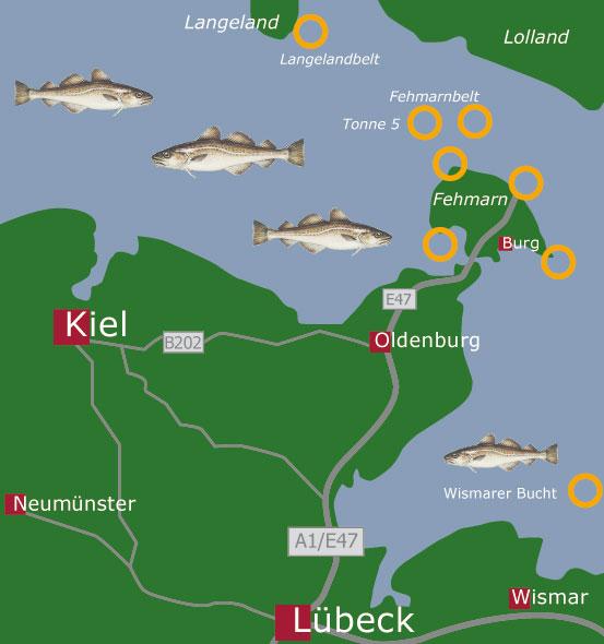 Fehmarn Karte Ostsee.Fanggrunde